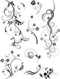 Set of floral ornaments isolated on white. Set of Floral Design Elements Swirl floral elements. Vector illustration Vector Illustration