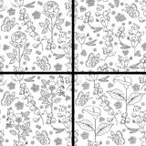 Set of floral pattern Royalty Free Stock Image