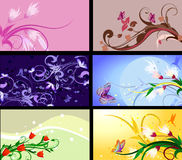 Set of floral patterns backgrounds Royalty Free Stock Photos
