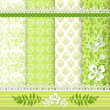 Set floral patterns and borders. Royalty Free Stock Image