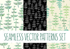 Set of floral patterns with fern. Vector set of floral patterns with fern Stock Photography