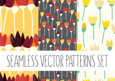 Set of floral patterns with flowers Royalty Free Stock Images