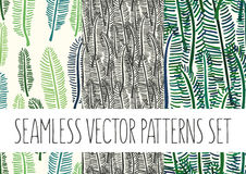 Set of floral patterns with palm tree leafs Royalty Free Stock Images