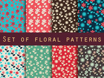 Set of floral patterns. Seamless pattern with flowers. Set of seamless patterns with spring flowers Royalty Free Stock Photos