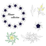 Set of floral patterns and vector wreaths royalty free illustration