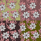Set of floral seamless background Royalty Free Stock Image