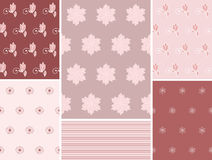Set floral seamless. Royalty Free Stock Image