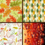 Set floral seamless patterns Royalty Free Stock Photography