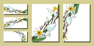 Set of floral spring templates with bunches of white daffodils and willow. Business card with narcissus and salix. For stock illustration