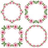 Set of floral vintage round frames on transparent background Stock Image