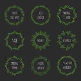 Set of floral wreathes Royalty Free Stock Image