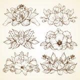 Set of flower arrangement Stock Images