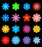 Set of flower blossoms Royalty Free Stock Photos