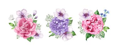 Set of flower Bouquets apple tree flower, gypsophila in watercolor style isolated on white background. For greeting. Cards, prints. All elements are editable vector illustration