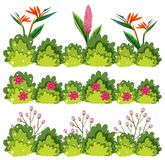 A set of flower bush. Illustration Stock Illustration