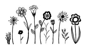 Set of flower doodles flower Royalty Free Stock Photos