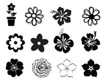 Set of flower illustrations. Set of summer flower illustrations  on white, silhouettes, symbols Royalty Free Stock Images