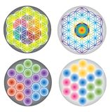 Set of Flower of Life Icons / Symbols Multicolored and Rainbow Colors Stock Images