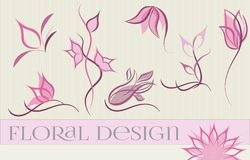 Set of flower logo designs. Set of flower logo designs in pink and purple colors vector illustration