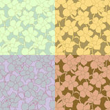 Set of flower seamless Stock Photo