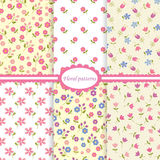 Set of flower seamless patterns Royalty Free Stock Photography
