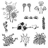 Set of flower sketch vector,free hand drawing doodle sketch on white background Stock Photo