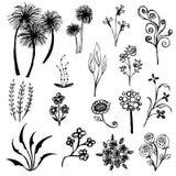 Set of flower sketch vector Stock Photo
