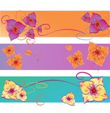 Set of Flower Vector Backgrounds. Abstract Floral Pattern with Three Banner Royalty Free Stock Photos