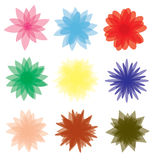 Set of flower Royalty Free Stock Photography