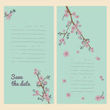 Set of flowering hand drown cherry blossom card. Vintage background Royalty Free Stock Photography