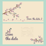 Set of flowering hand drown cherry blossom card. Vintage background Royalty Free Stock Image