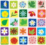 Set Flowers. Stock Images