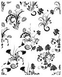 Set of flowers backgrounds Royalty Free Stock Image