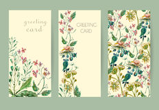 Set flowers card Stock Images