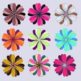 Set of flowers with colorful vector illustration
