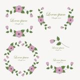 Set of flowers design elements. Stock Photography