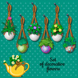 Set flowers in hanging pots and kettle, 7 elements Stock Photography