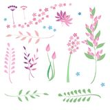 Set of flowers and herbs . stock illustration