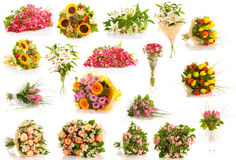 Set  flowers isolated Stock Photos