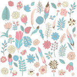 Set of flowers, leaves, feathers pink, green and blue colors. Vector set of flowers, leaves, feathers in tender pink, green and blue colors. Hand drawn objects Royalty Free Stock Photography