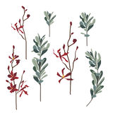 Set of flowers and leaves, hand drawn style. vector illustration