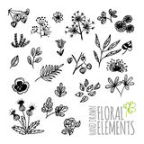 Set of flowers and leaves sketches Royalty Free Stock Photo