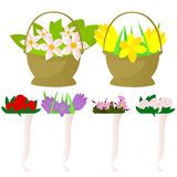 Set of flowers in pots and baskets Royalty Free Stock Image