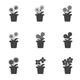 Set of Flowers in Pots Icon Royalty Free Stock Image