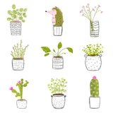 Flowers in Pots Hand Drawn. Set of flowers in pots vector hand drawn set vector illustration