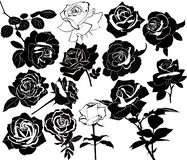 Set of flowers of roses isolated on white background stock illustration