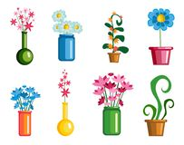 Set flowers on a white background. Spring flowers set Royalty Free Stock Photo
