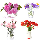 Set of flowers on white Stock Image