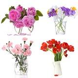 Set of flowers on white Stock Image