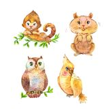 Set of fluffy wild animals. Cute unusual pets. Watercolor illustrations Royalty Free Stock Images